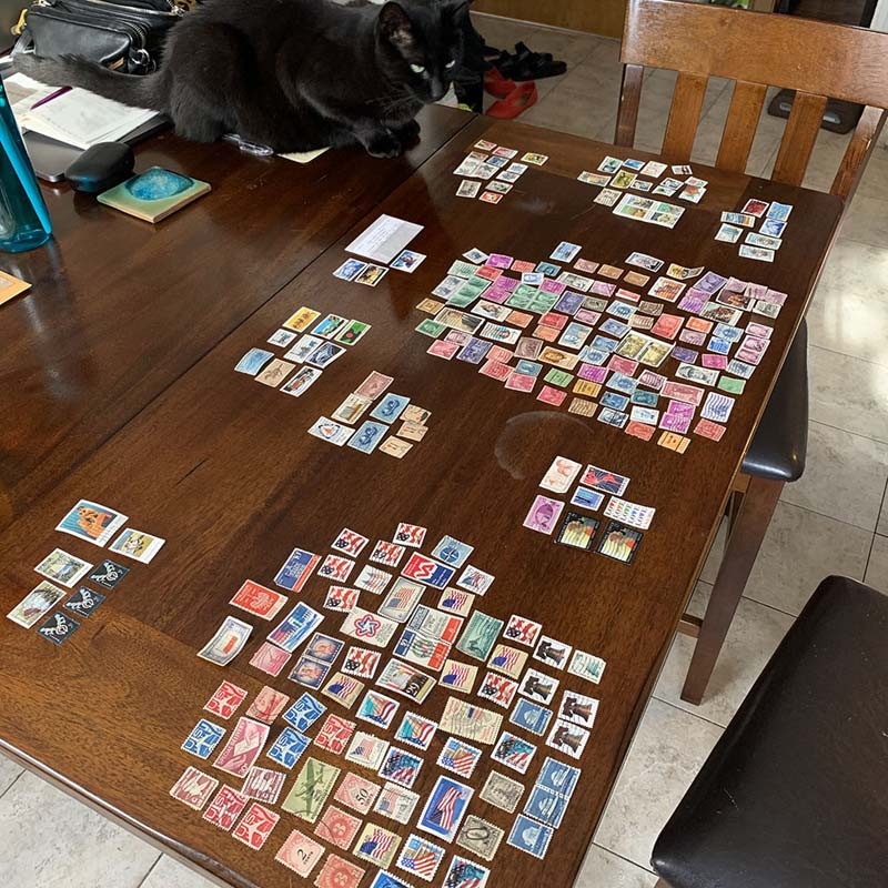 many stamps organized on a large brown table with a black cat looking confused