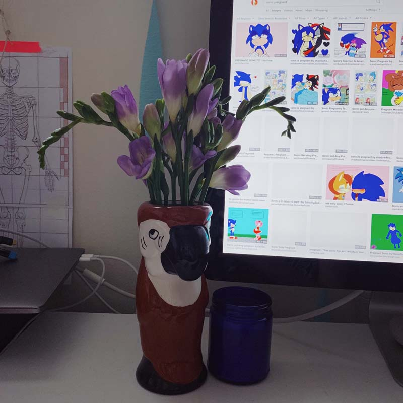 photo of a parrot tiki mug being used as a vase. in the background is my computer showing illustrations of characters from sonic the hedgehog kissing